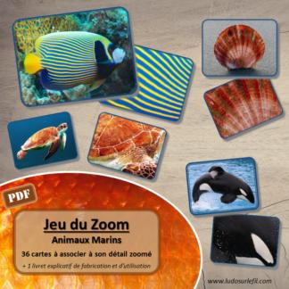 Jeu du zoom - animaux marins - mer - cartes à associer aux détails - à télécharger et à imprimer - atelier maternelle - Eté - lslf