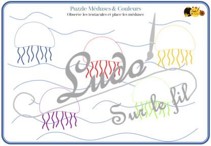 Puzzles méduses - animaux marins - mer - travail couleurs, observation, discrimination visuelle, lecture, mathématiques - atelier autonome maternelle (cycle 1) - jeu fichier à télécharger et à imprimer - Eté - lslf
