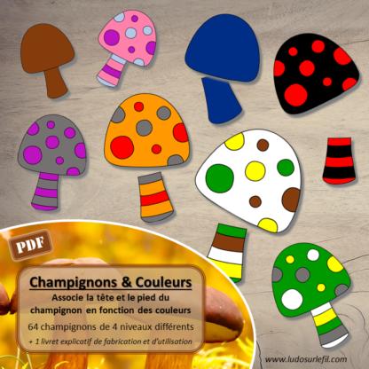 Champignons et couleurs : jeu association de couleurs - pied et chapeau - 64 champignons - 4 niveaux progressifs - vocabulaire - jeu atelier autonome maternelle - a imprimer à télécharger - lslf