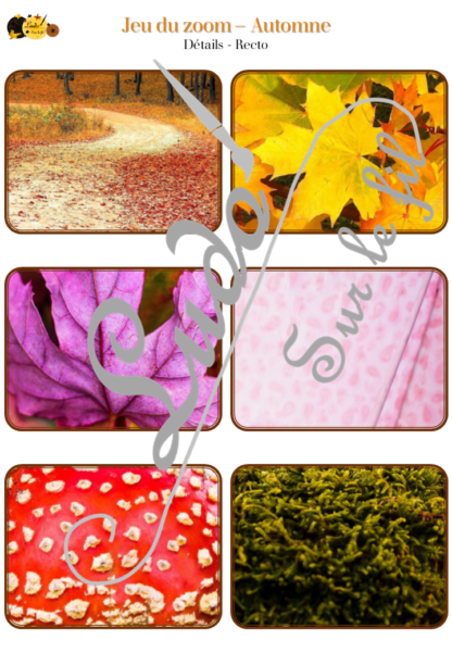 Jeu du zoom - automne et Halloween - cartes à associer aux détails - à télécharger et à imprimer - atelier maternelle - lslf