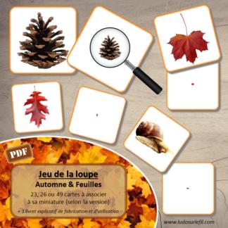 Jeu de la loupe - Miniatures - automne et feuilles - cartes à associer aux miniatures - à télécharger et à imprimer - atelier autocorrectif maternelle - lslf
