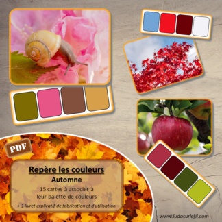 Jeu repère les couleurs - automne - photos / cartes à associer aux palettes de couleurs - à télécharger et à imprimer - atelier maternelle - observation, déduction, logique, discrimination visuelle - lslf