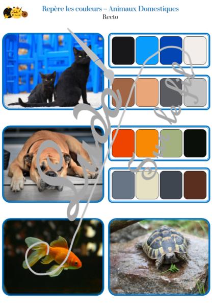 Jeu repère les couleurs - Animaux domestiques et de la maison - photos / cartes à associer aux palettes de 4 couleurs - à télécharger et à imprimer - atelier autocorrectif maternelle ou cycle 2 - observation, déduction, logique, discrimination visuelle, vocabulaire et lexique - lslf