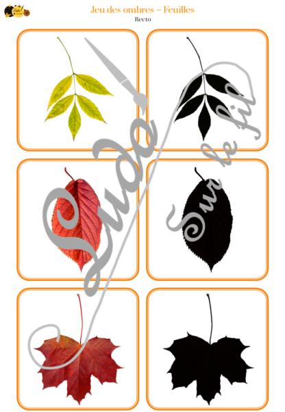 Jeu des ombres - automne et feuilles - cartes à associer aux ombres - à télécharger et à imprimer - atelier autocorrectif maternelle - lslf