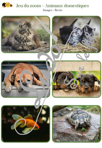 Jeu du zoom - animaux de la ferme et domestiques - cartes à associer aux détails - à télécharger et à imprimer - atelier maternelle - lslf
