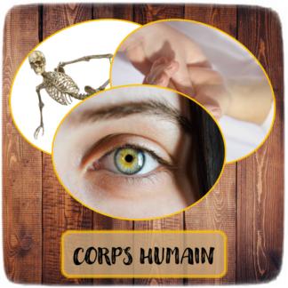 Corps humain & 5 Sens