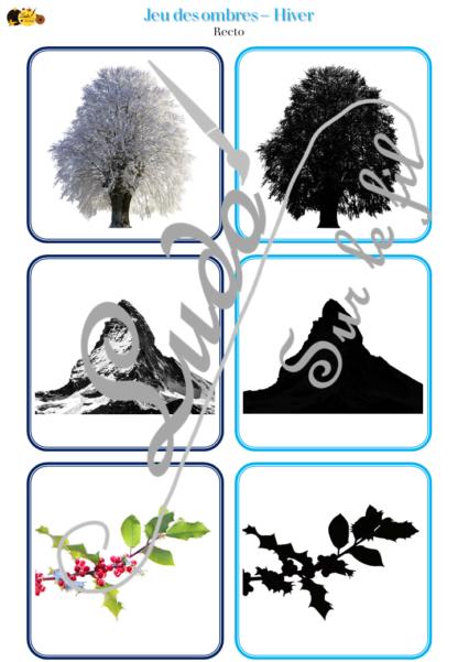Jeu des ombres - Hiver - animaux du froid, fruits et légumes, nature, vêtements, évènements, noël, objets - cartes à associer aux ombres - à télécharger et à imprimer - atelier autocorrectif maternelle - lslf