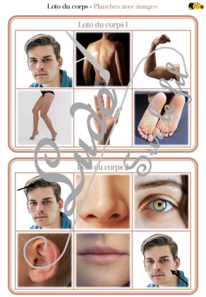Loto combinable - Parties du corps humain - images noms - jeu progressif et à combiner - lecture et observation - travail de vocabulaire et du langage oral - à télécharger et à imprimer - Atelier maternelle - lslf