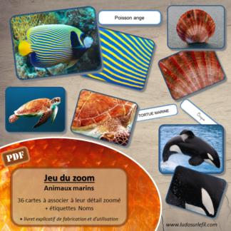 Jeu du zoom - Animaux marins - été - Animaux de la mer : poissons, mammifères, coquillages, crustacés- cartes classifiées à associer aux détails - Etiquettes noms pour alternative ludique aux cartes de nomenclature - à télécharger et à imprimer - atelier maternelle - vocabulaire et connaissances - autocorrectif - lecture mots - lslf