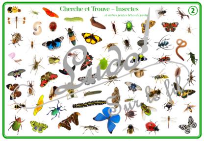 Cherche et Trouve - Lynx - Insectes et autres petites bêtes du jardin - Printemps et animaux - 1 plateau et 35 ou 70 cartes à trouver - 2 niveaux - jeu - observation, rapidité - à télécharger et à imprimer - atelier maternelle- lslf