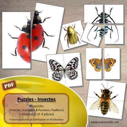Jeu de puzzles - Insectes - 2 et 4 pièces - Demi-Insectes - 80 insectes à reconstituer - 3 versions (insectes communs, scarabées et punaises, papillons) - Demi-scarabées - Demi-Papillon - Jeu association - observation - discrimination visuelle - à télécharger et à imprimer - Printemps - Atelier maternelle Cycle 2 - Vocabulaire - lslf