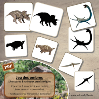 Jeu des ombres - Dinosaures et Animaux Préhistoriques - terrestres, volants, aquatiques - cartes à associer aux ombres - à télécharger et à imprimer ou jeu imprimé - atelier autocorrectif maternelle - discrimination visuelle - lslf