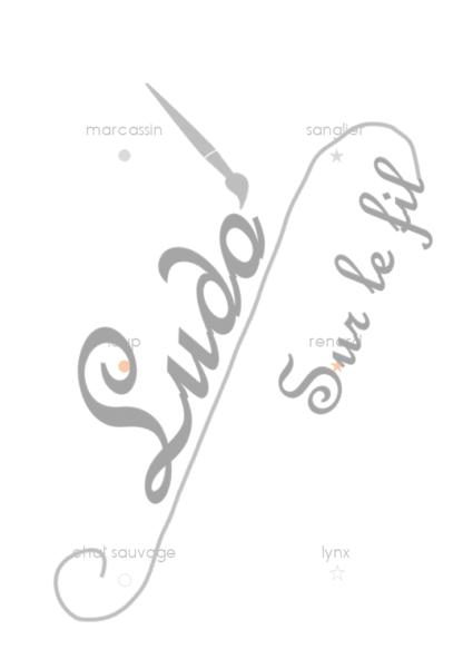 Jeu de cartes type Montessori (classifiées et de nomenclature) - Animaux de la forêt et des bois - Mammifère, oiseaux, reptiles, insectes... - Europe -Photos sur fond blanc - Autocorrection au dos (noms pour lecteurs, symboles pour non lecteur) - 3 graphies disponibles - Script, majuscule, cursif - Document PDF à télécharger et imprimer ou jeu imprimé - Automne - 53 cartes - Tickets de lecture - atelier autocorrectif maternelle élémentaire - Cycle 1 ou 2 - discrimination visuelle, observation, culture générale, lecture de mots, langage oral, lexique- lslf